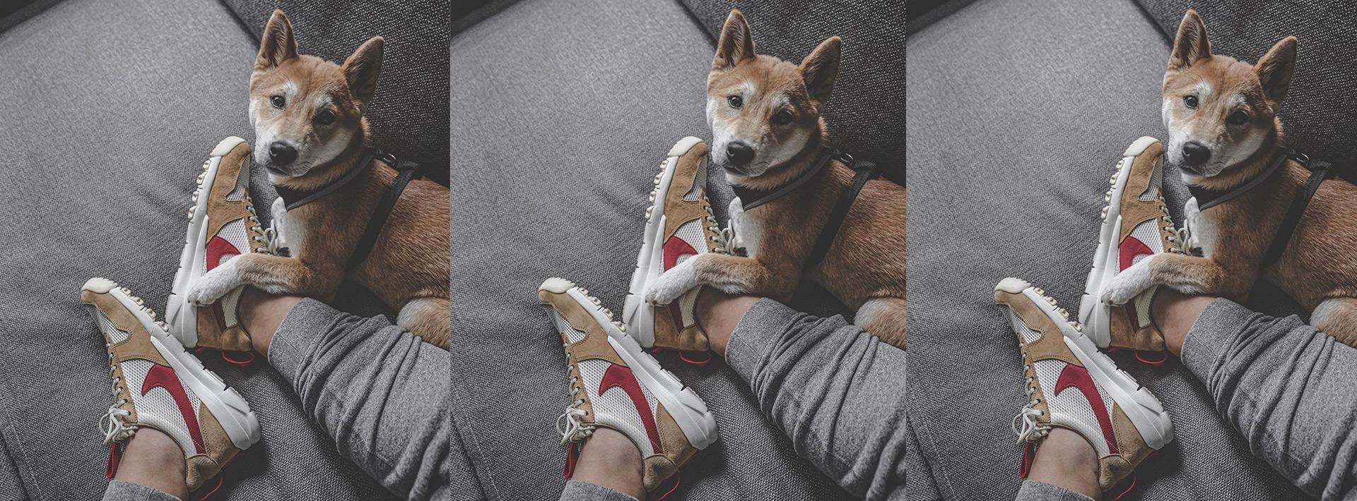 TOM SACHS X NIKE MARS YARD 2.0 may be releasing Spring 2020 again nd sneakerheads be drippin.