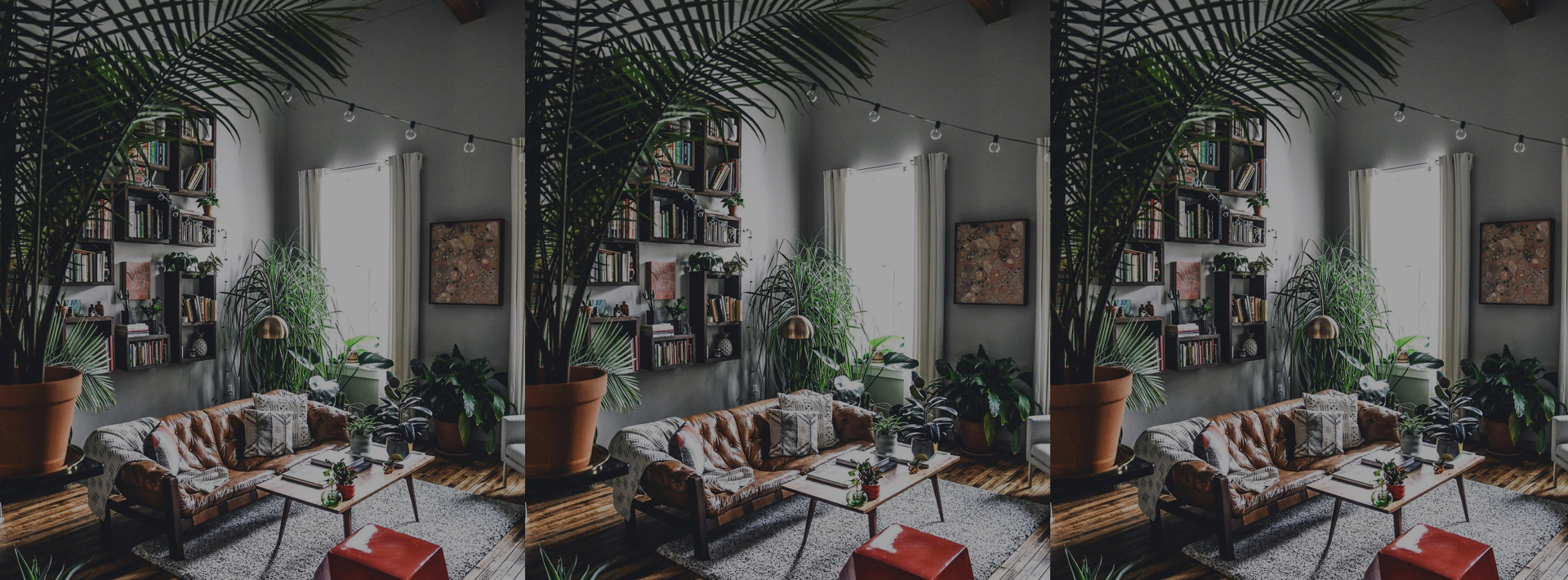 Indoor nature may be the answer to make us feel human again. 🍃